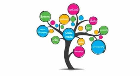 social-media-company-miami-florida