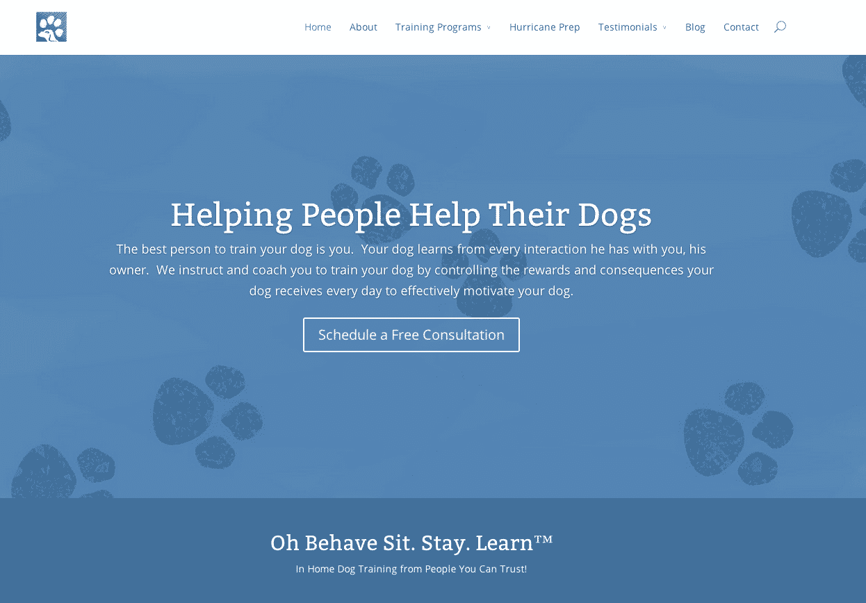 dog trainer website development miami